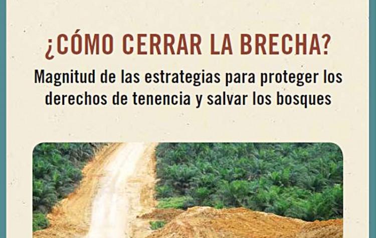 Como-Cerrar-La-Brecha_RRI-Annual-Review-2016_Espanol