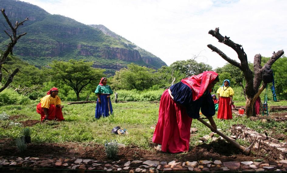 pueblosindigenasterritorios
